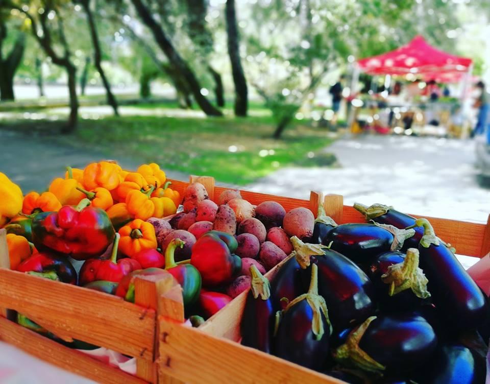 Quinta das Conchas - Mercado