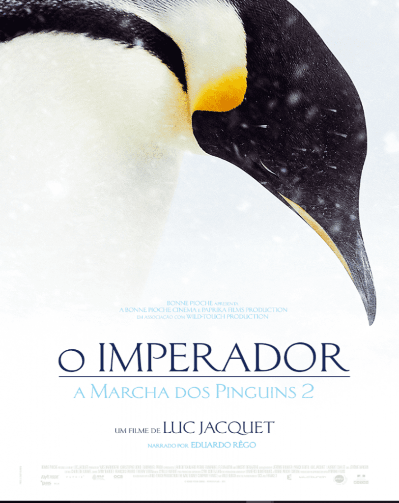 o-imperador-marcha-pinguins-2