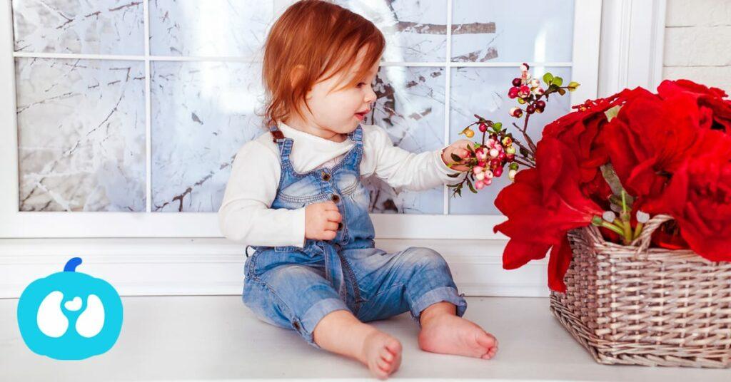 As melhores Atividades para Bebés no fim de semana de 11 e 12 de Novembro