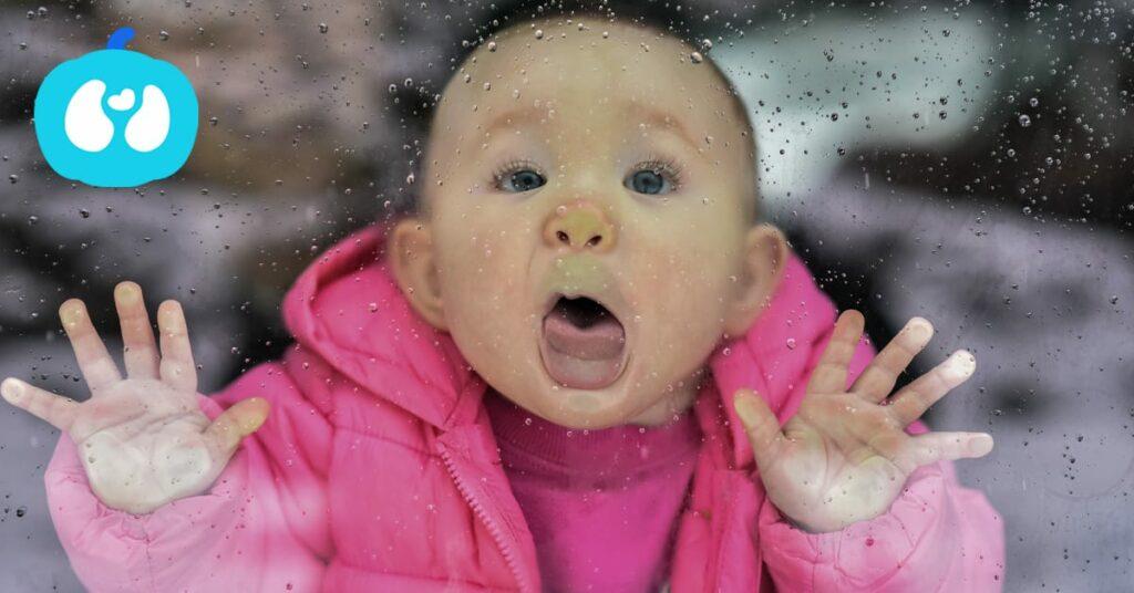Melhores Actividades para bebés fim de semana 3 e 4 de Fevereiro