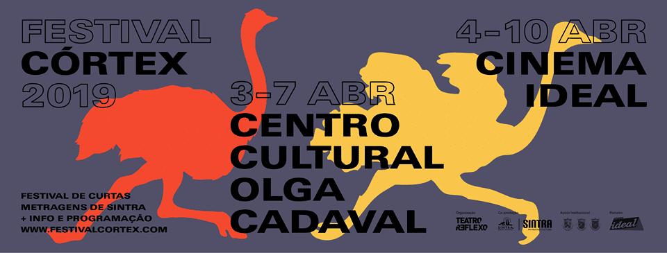 Festival Cortex