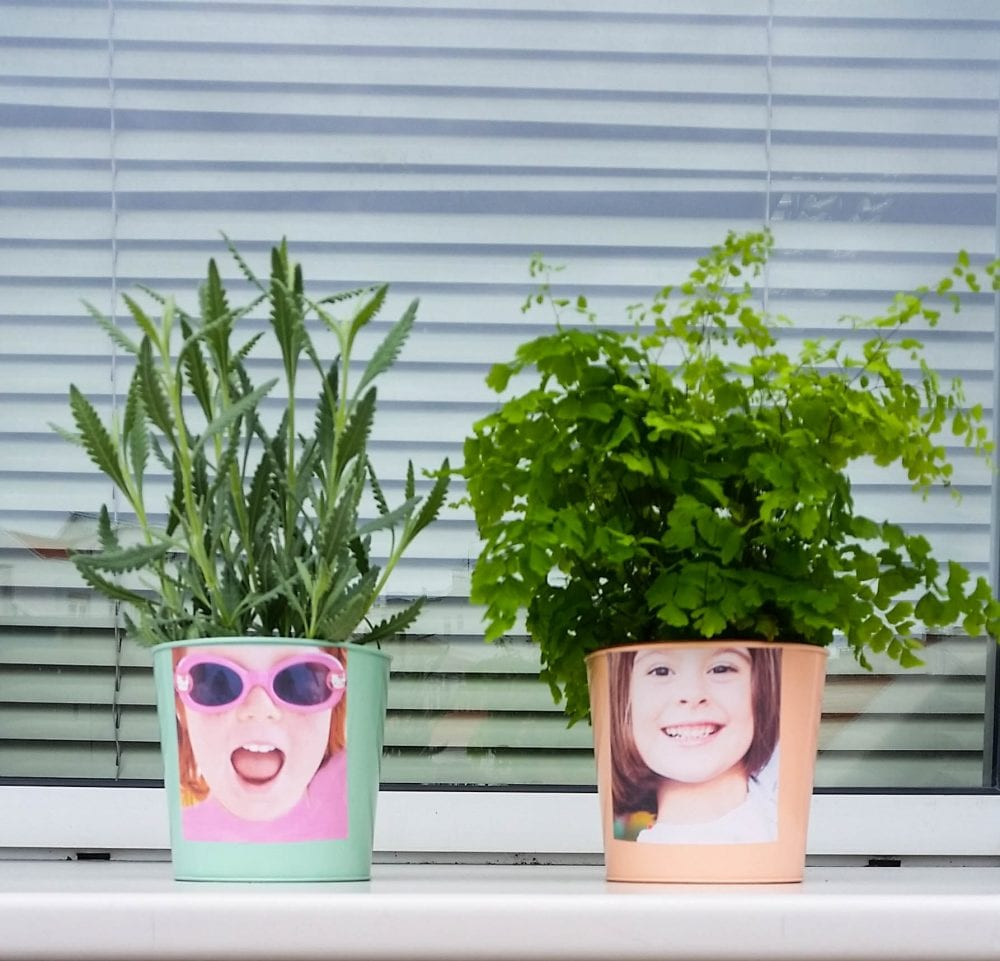 vasos decorativos e personalizados