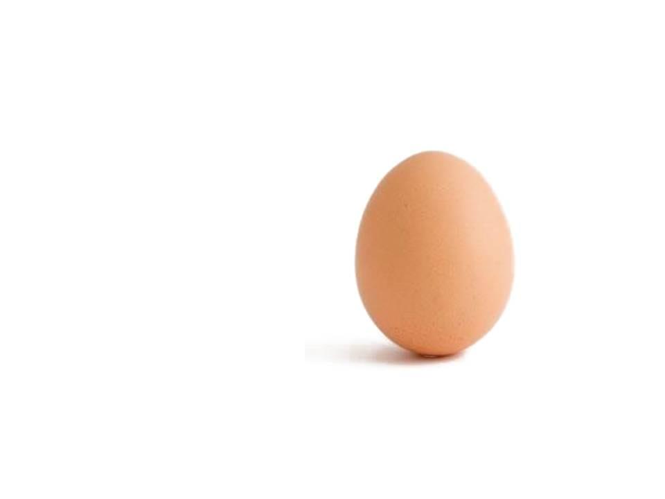 Oficina - O Ovo da Páscoa