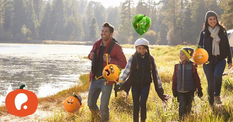 Recomendações Mês Maio Pumpkin