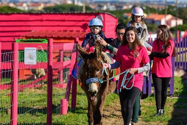 Quinta Pedagógica Burros do Magoito: burros… e muito mais!
