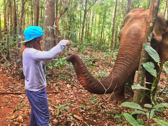 maria-do-mar-elefantes