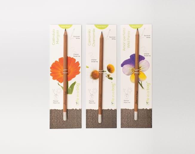 lápis semente