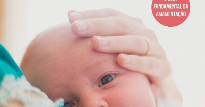 Amamentar: a escolha natural para o seu bebe