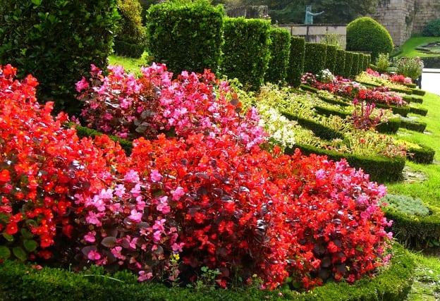Jardim Dr. Adelino Sampaio