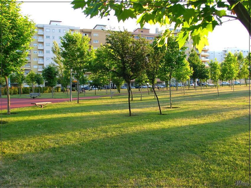 Parque da Quinta da Braguinha