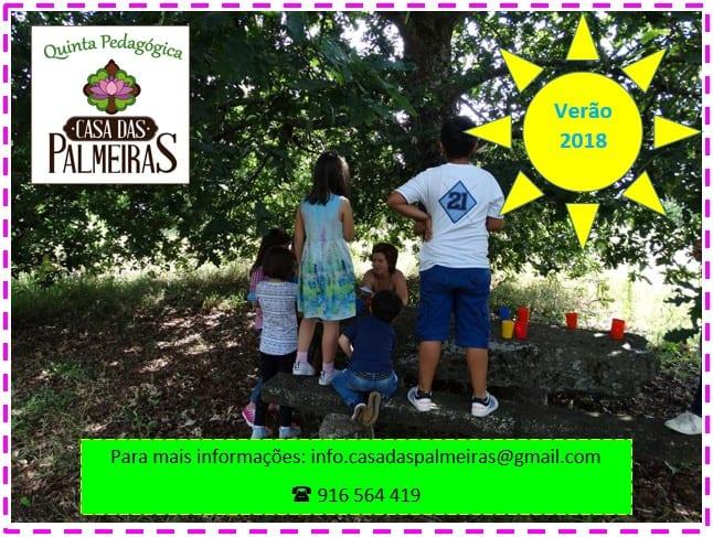 Programa de Férias de Verão na Quinta Pedagógica da Casa das Palmeiras