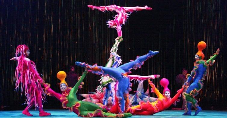 Festival Internacional de Circo do Porto