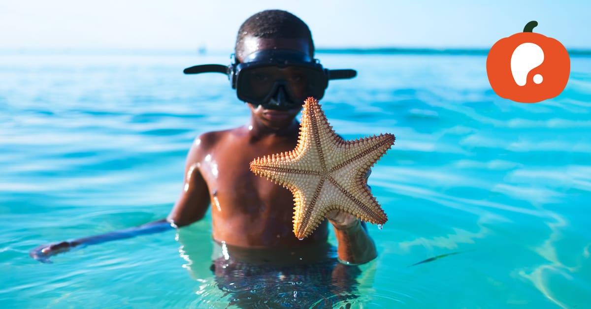 Melhores atividades para Crianças no fim de semana de 4 e 5 de Agosto
