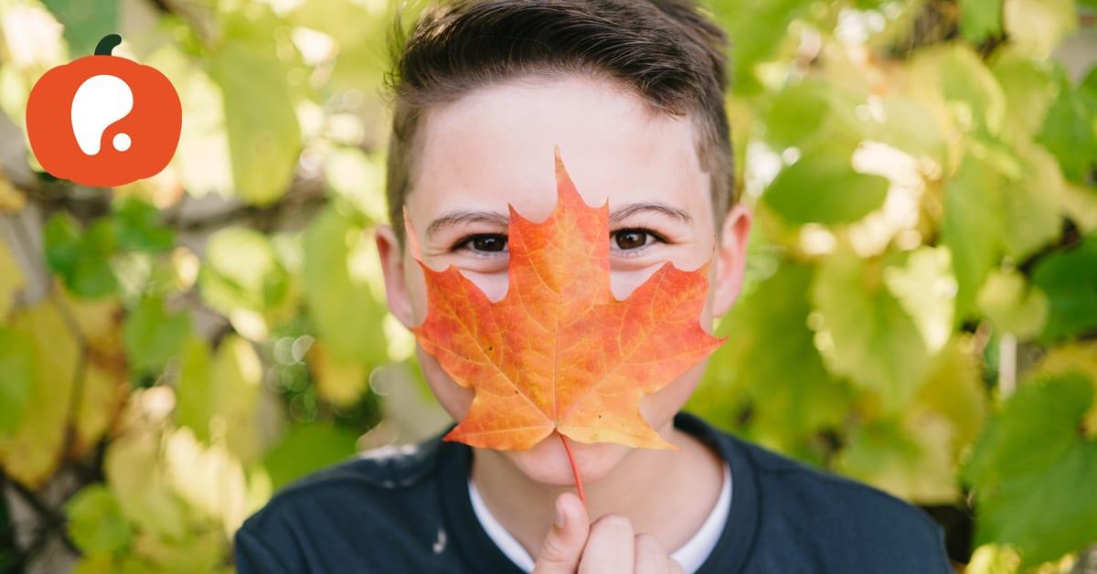 Onde levar os miúdos este fim de semana de 29 e 30 de Setembro: atividades para crianças
