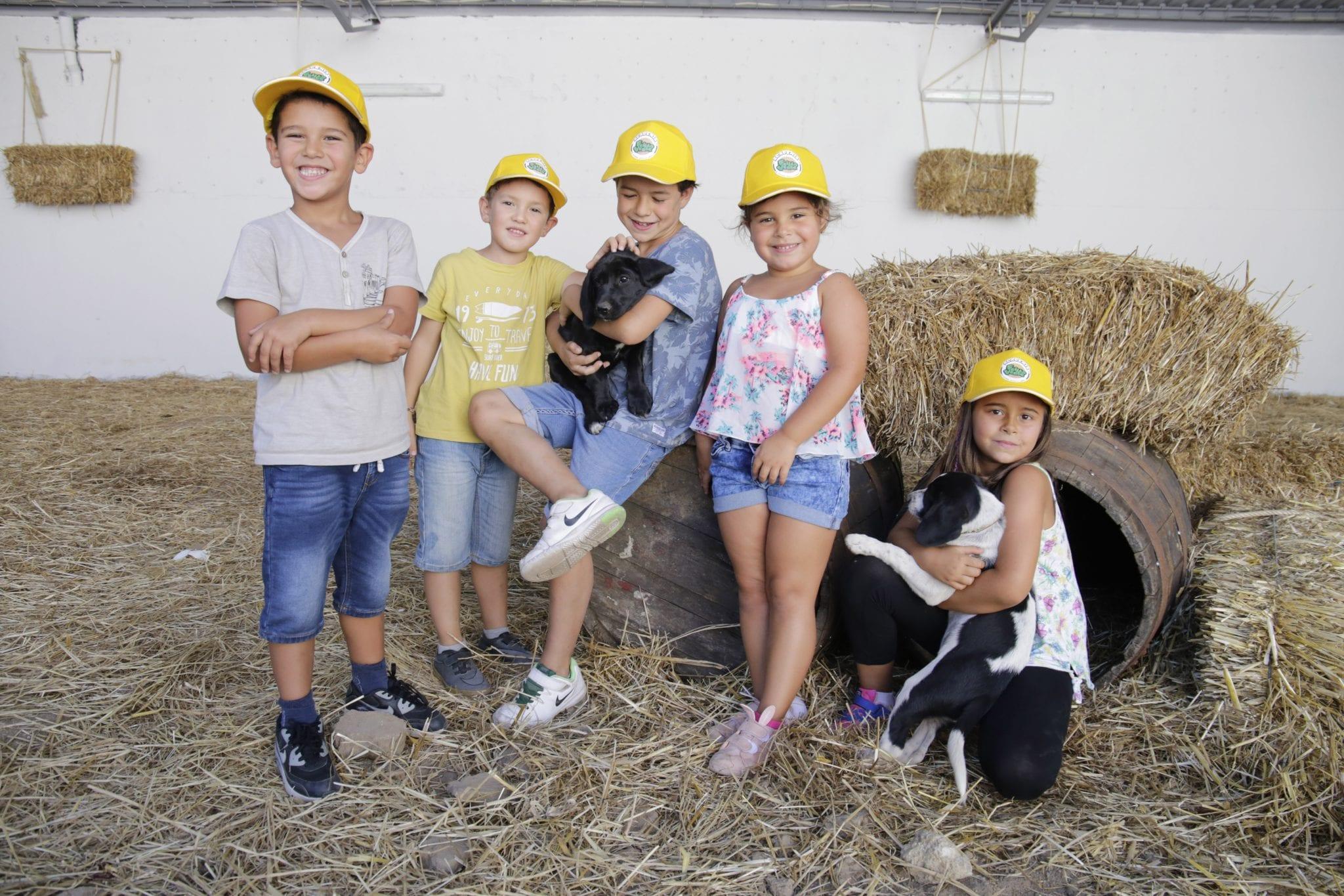 Feijão Verde Coimbra Visita aos animais da quinta