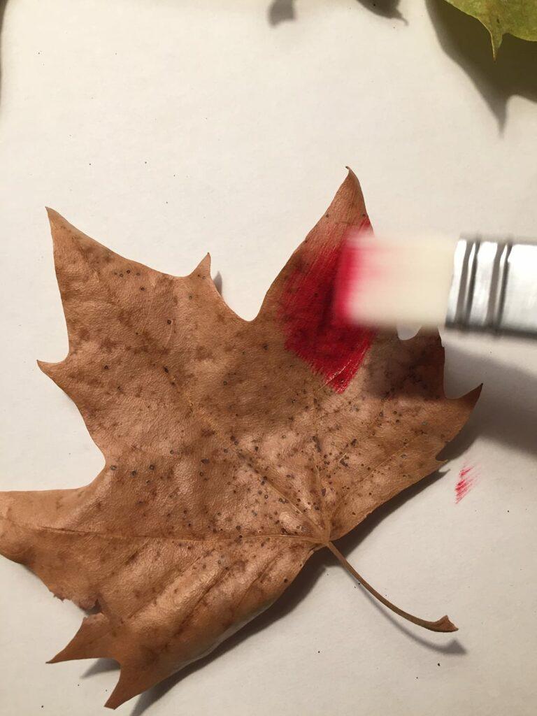 pintar o outono 3