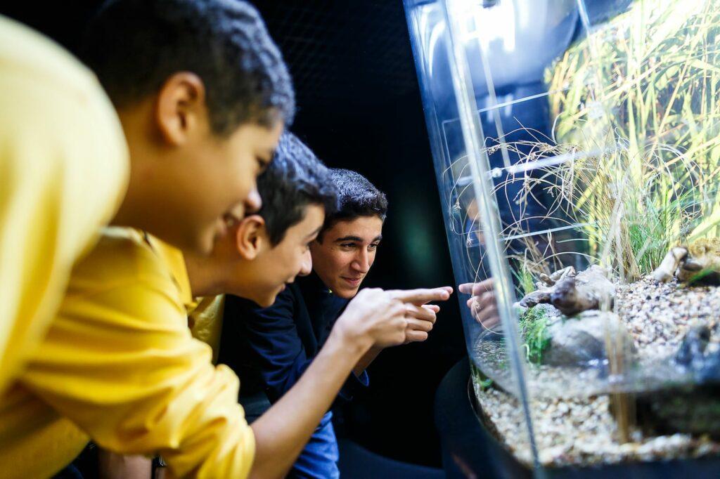 Programa Educativo Oceanário