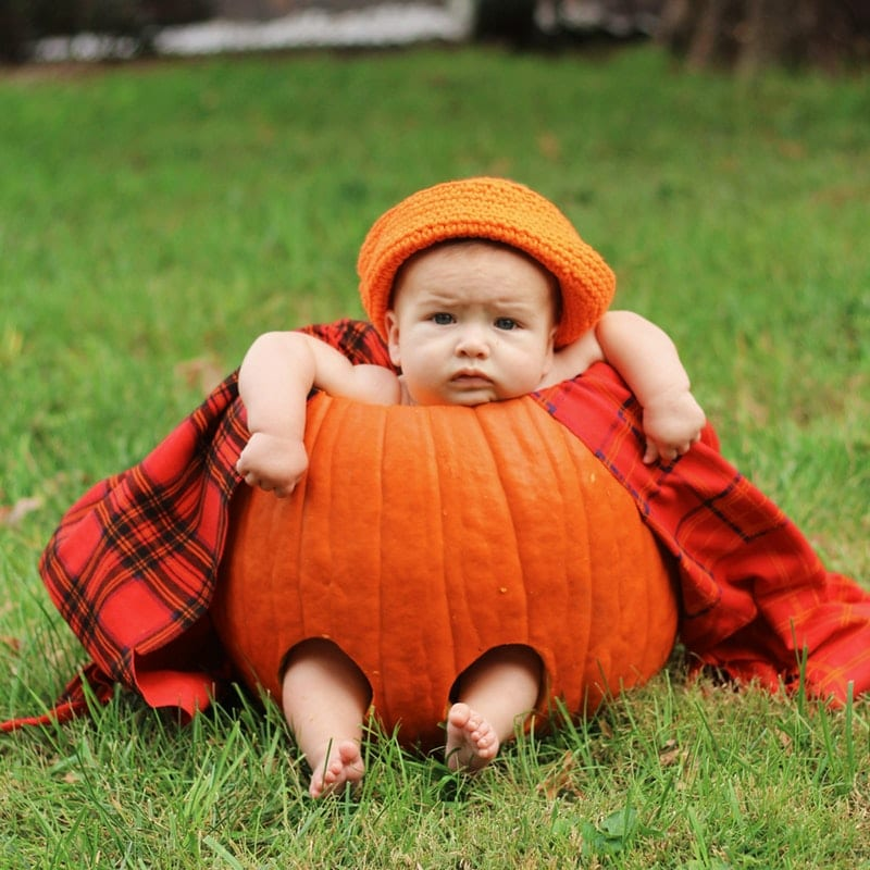 fatos de halloween para bebés - abobrinha
