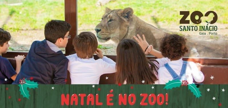 Férias de Natal no Zoo de Santo Inácio