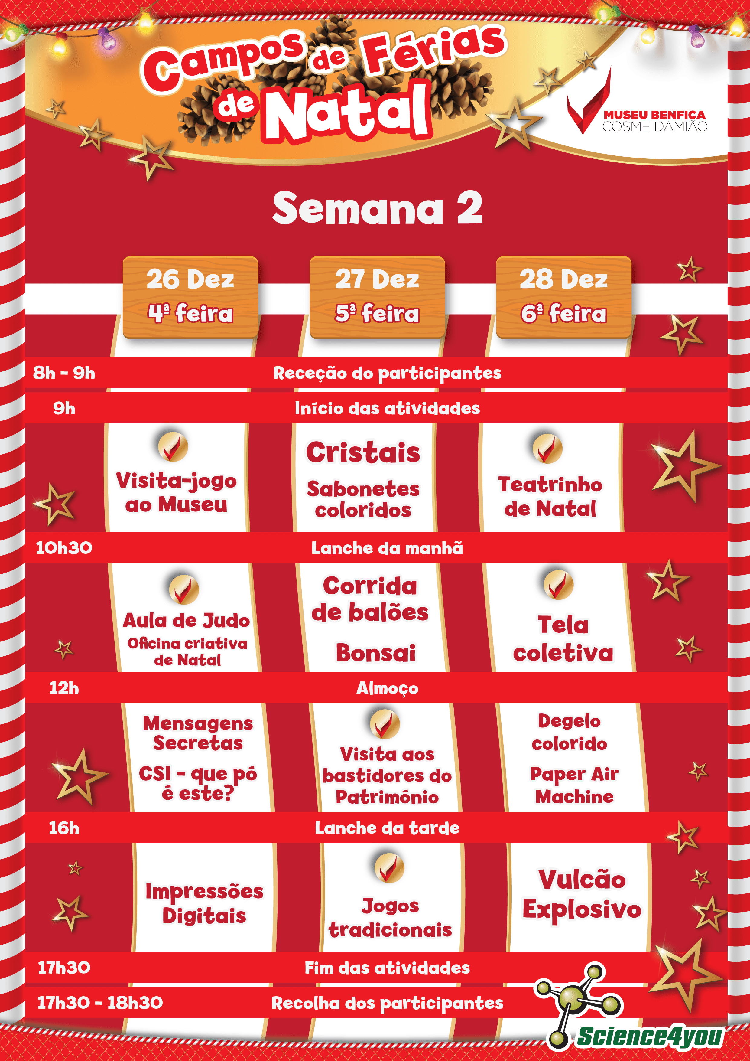 férias de natal science4you benfica 2 semana