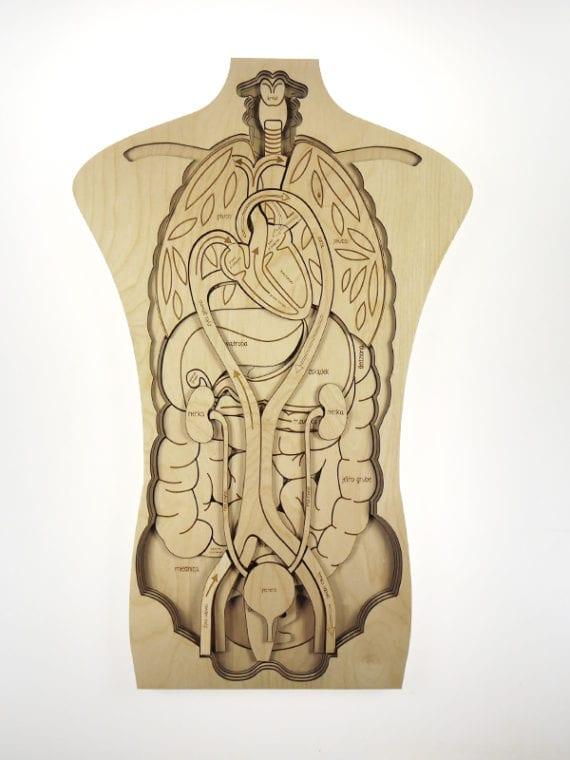 puzzle corpo humano