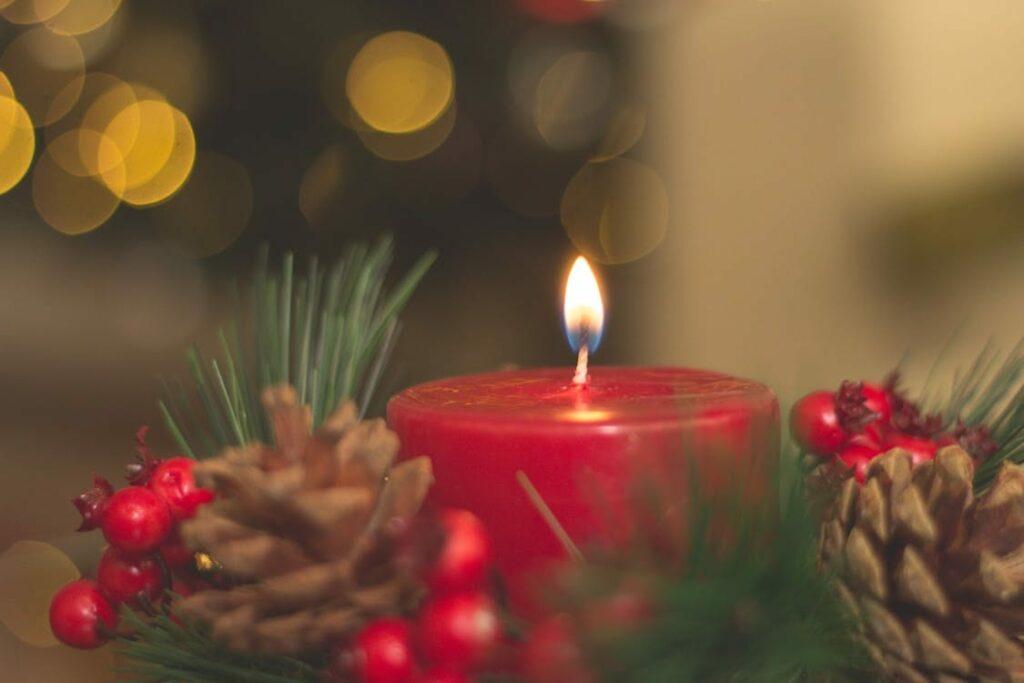 tradições de natal em portugal - foto pixabay - azevinho