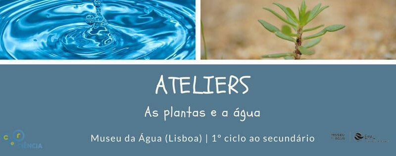 Ateliers – As plantas e a Água