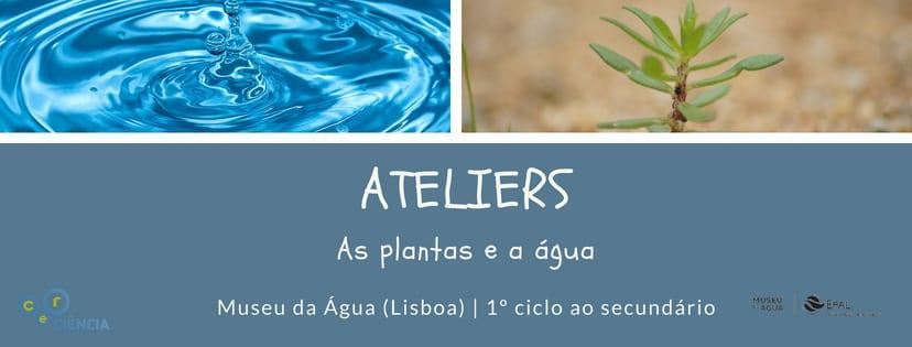 """Ateliers """"As plantas e a água"""""""