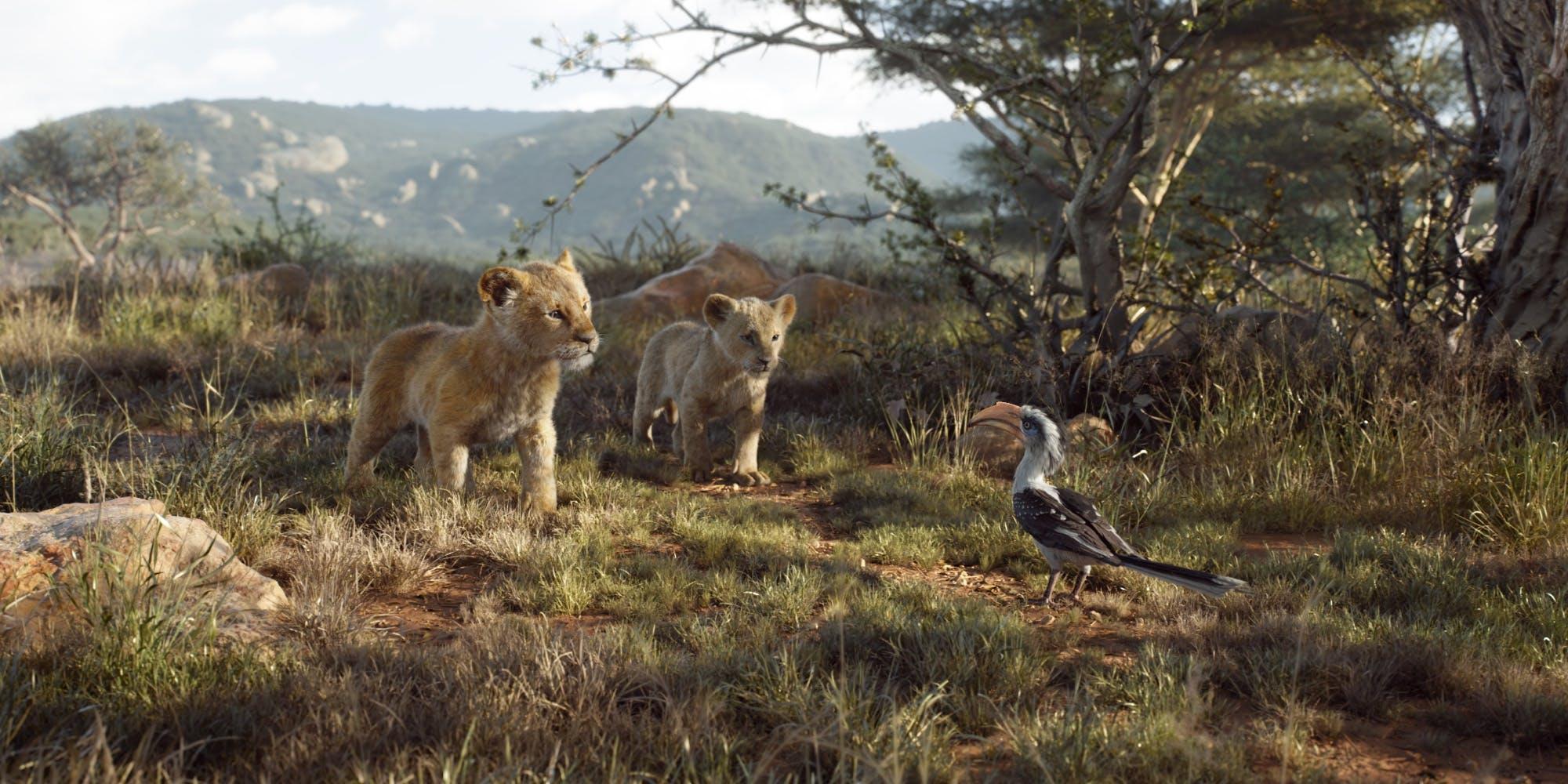 o rei leão simba nala