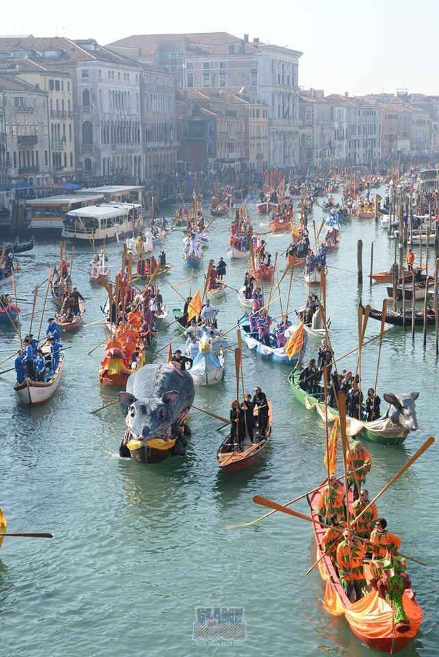 carnaval de veneza desfiles
