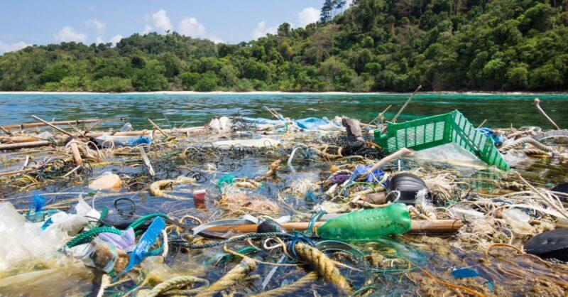 Limpeza costeira: vamos despoluir o oceano?