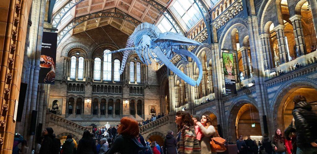O que visitar em Londres - Natural History Museum - Museu de História Natural