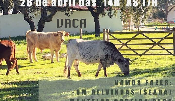 Quinta em Família – Vaca
