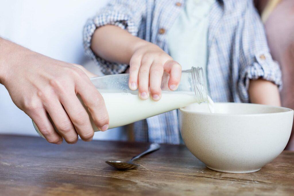 dia do leite