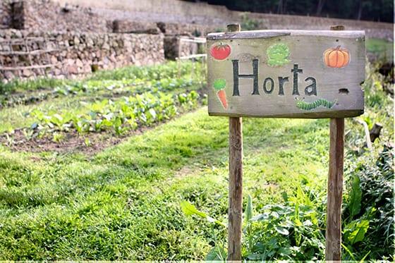 Horta_quintinha
