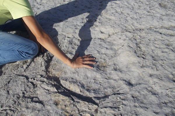 monumento natural de pegadas de dinossaurios