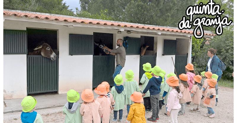 Quinta da Granja: uma Quinta Pedagógica para escolas!