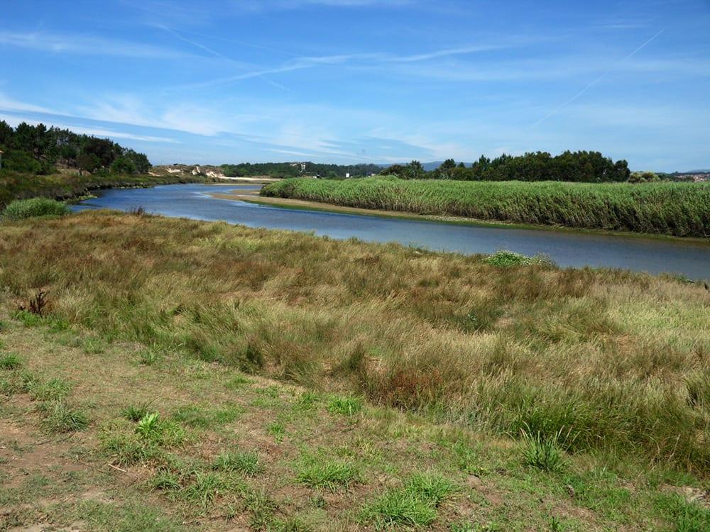 foz do rio neiva