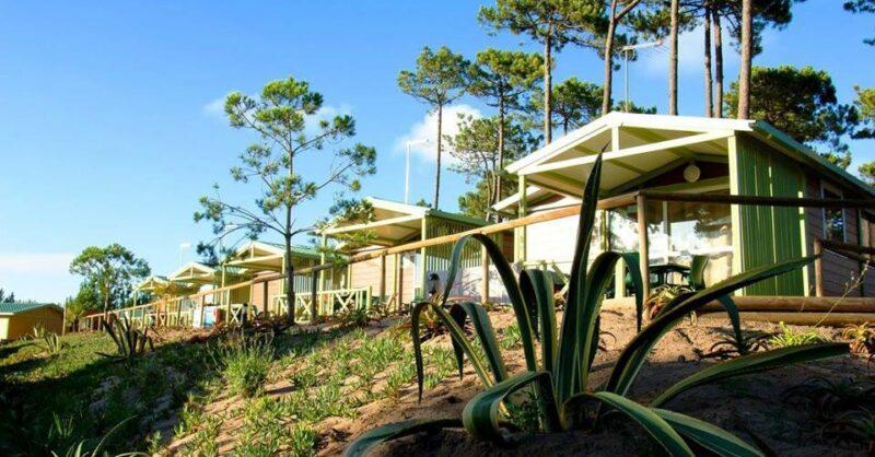 Vale Paraíso Natur Park: férias no meio da Natureza!