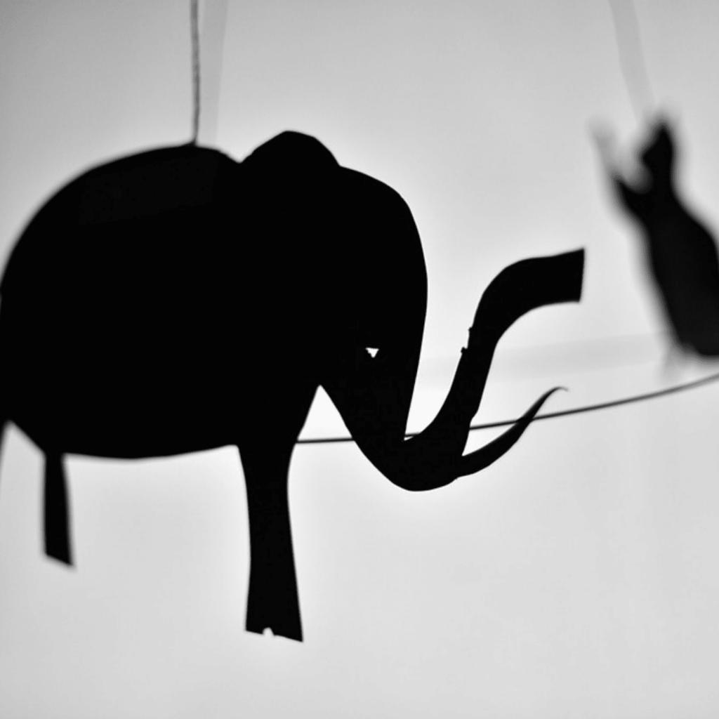 O Ploc do Pollock | Festival Artes à Vila