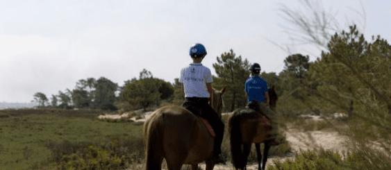 passeios a cavalo troia