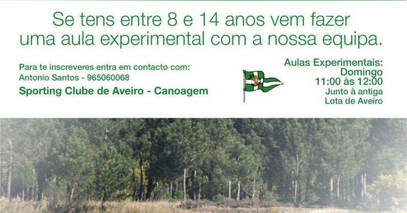 canoagem sporting clube de aveiro