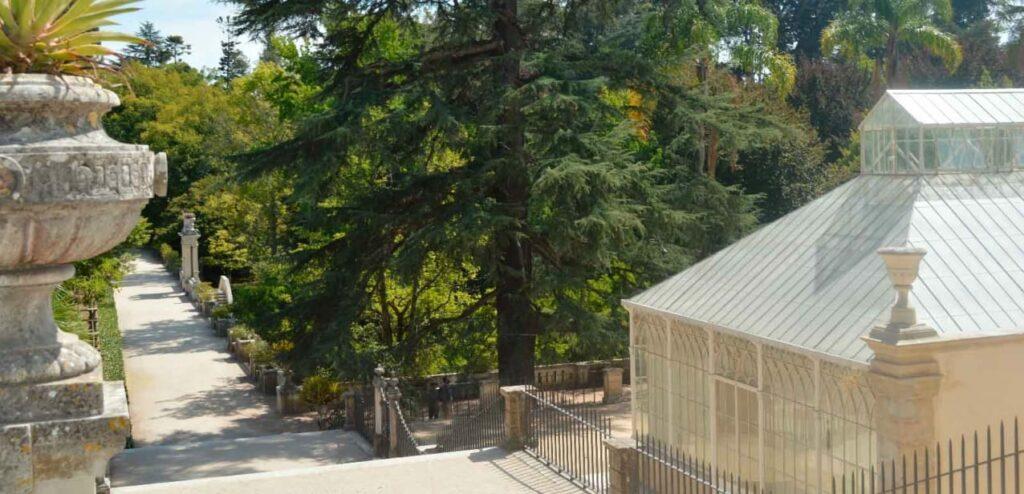Jardim Botânico de Coimbra