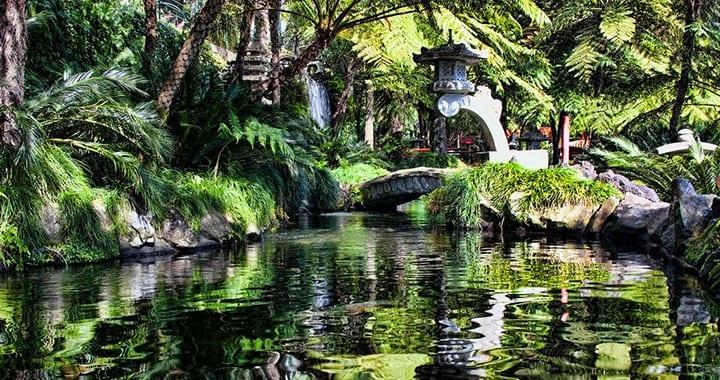 Museu Jardim Tropical Monte Palace