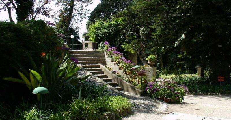 Jardim Botânico Monteiro-Mor