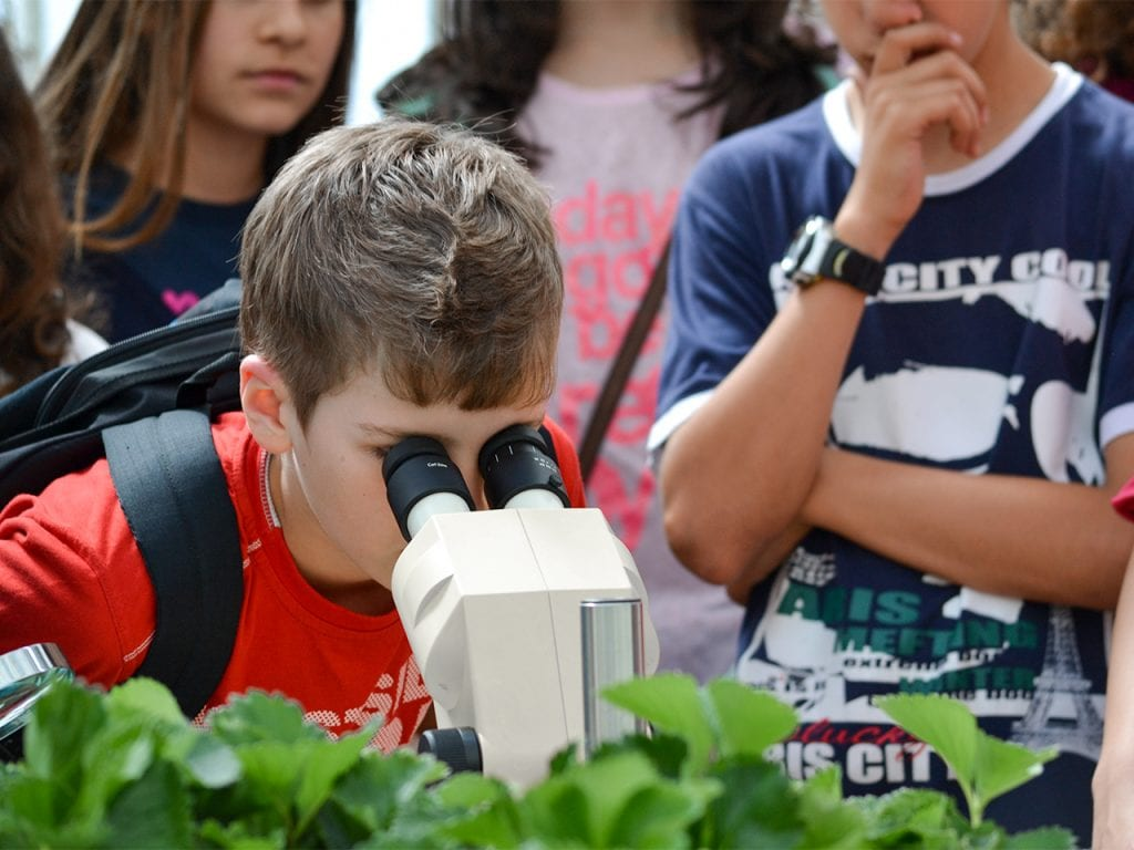 Dia Internacional do Microrganismo