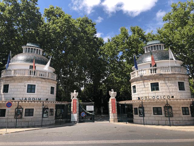 Cinema Gratuito no Jardim Zoológico