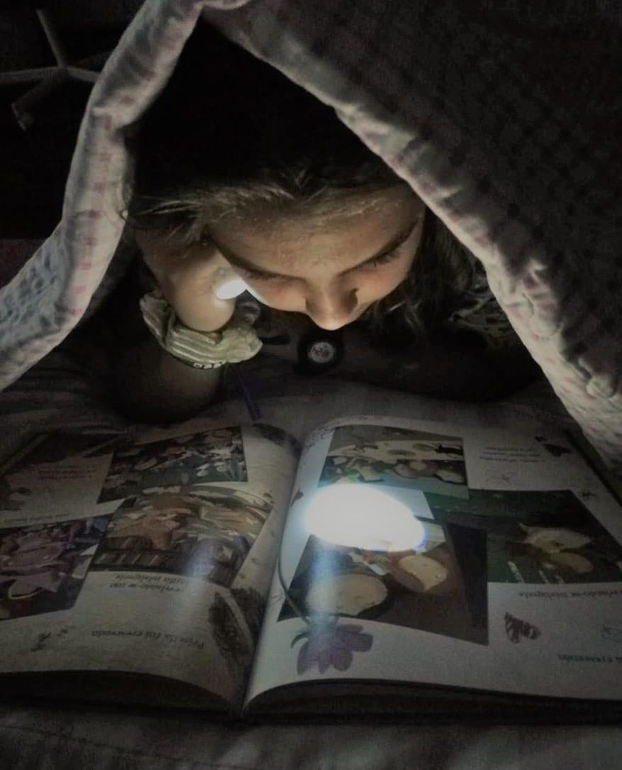 Ler no Escuro (2ª edição)