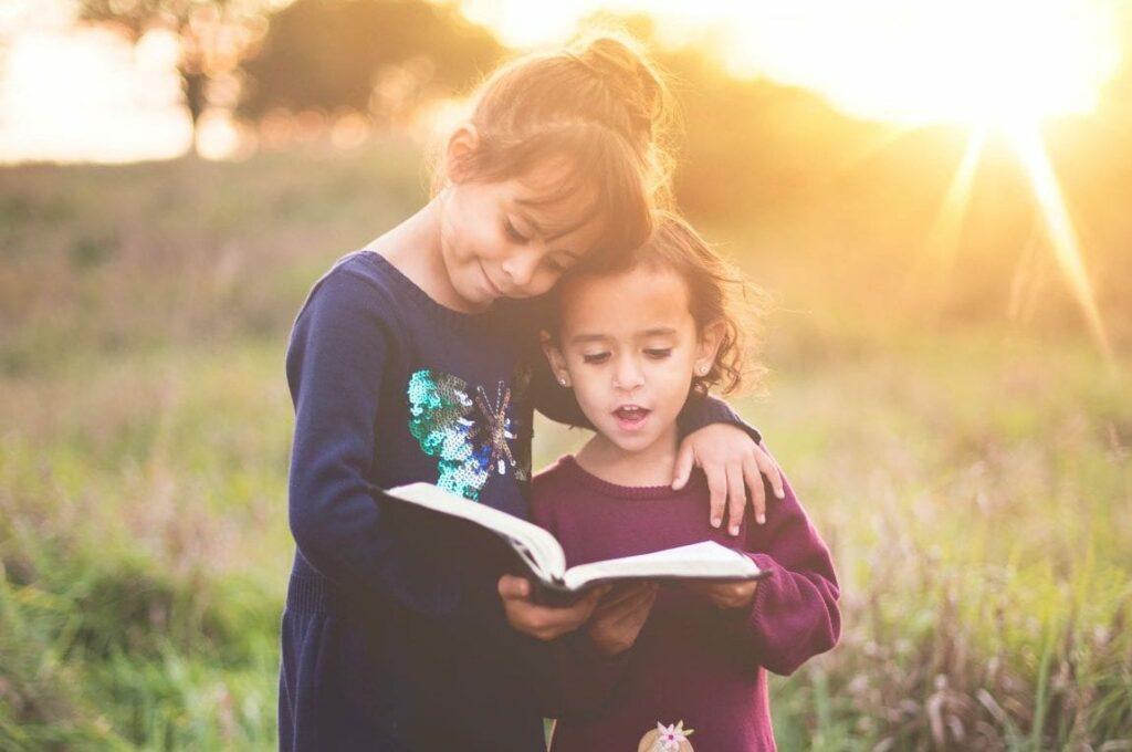 livros sobre ambiente para crianças