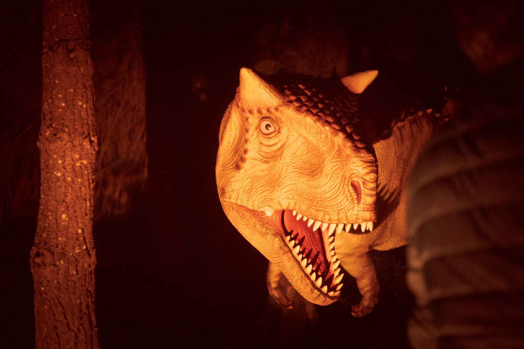 Halloween Dino Parque